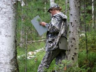 Геоботанические исследования в горно-таежных участках