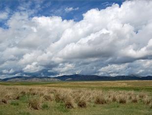Камызякская степь (фото Б. Налобин)