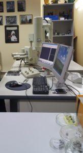 Демонстрация работы сканирующего электронного микроскопа