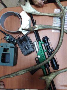 Спец.техника применяемая при исследования северного оленя - спутниковый ошейник, оружие для обездвиживания чтобы брать пробы