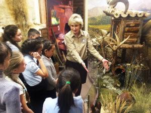 """Экскурсия по Музею природы для участников проектов """"Japan Art Mile"""""""