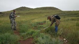 Исследование зарастания рекреационной тропы на горе Чалпан (участок «Озеро Белё»)