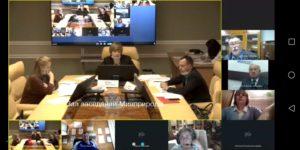 Заседание по лошади Пржевальского в формате видеоконференции