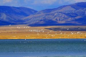 Озеро Улух-Коль