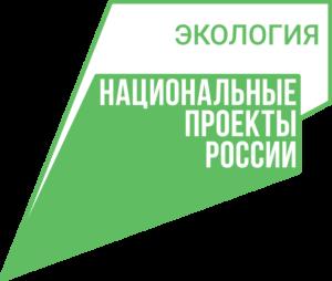 лого нацпроекта