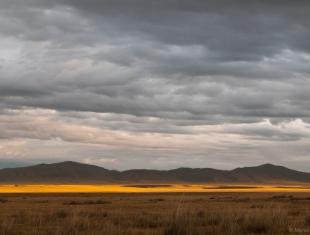 Камызякская степь (фото М. Куваева)