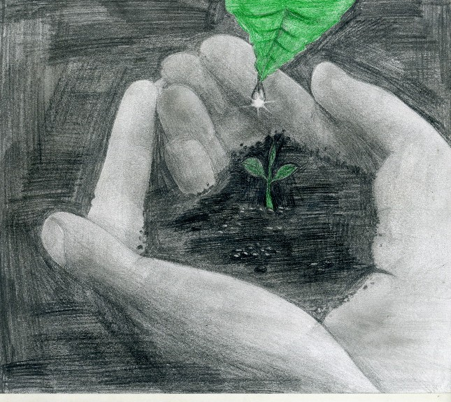 Картинки на тему о защите природы