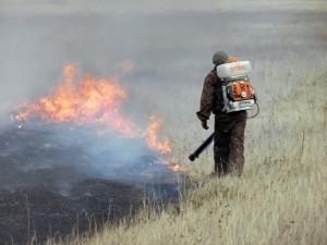 Тушение травяного пожара в заповеднике (весна 2013г)