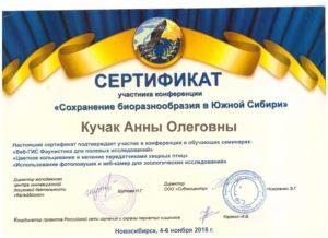 Сертификат об участи