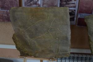 Копия петроглифа Оглахтинского хребта