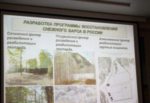 Предложенный проект участников семинара