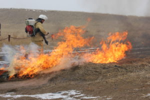Training in extinguishing wildfires