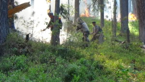 Ликвидация природного пожара