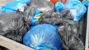 Собранный мусор с побережья озера Белё