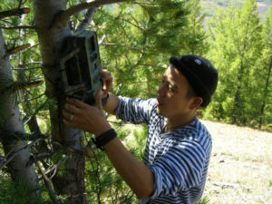 Collecting data from camera trap