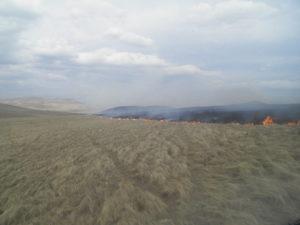Степной пожар на сопредельной территории